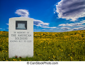 Unknown Soldier - Grave stone standing in rolling field of...