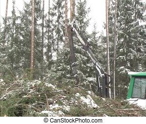 unload truck branch snow