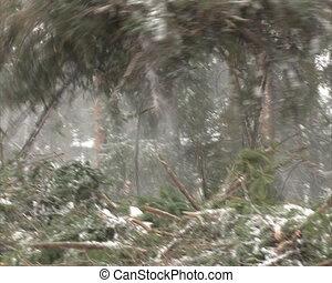 unload truck twig winter
