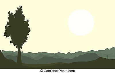 uno, árbol, en, colina, fondos, de, paisaje