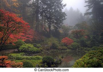 uno, brumoso, mañana, en, jardín japonés, en, el, otoño