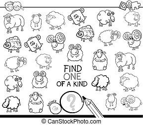 uno clase, juego, con, color oveja, libro