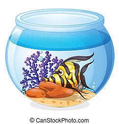 uno, fish, dentro, il, vaso