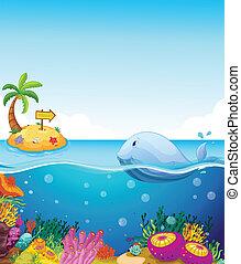 uno, fish, guardando, il, isola, con, un, freccia
