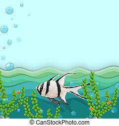 uno, fish, sotto, il, mare
