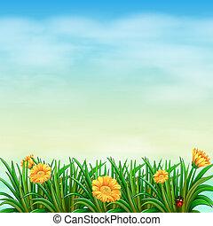 uno, giardino, sotto, il, cielo