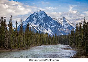 uno, montagna, in, jasper parco nazionale