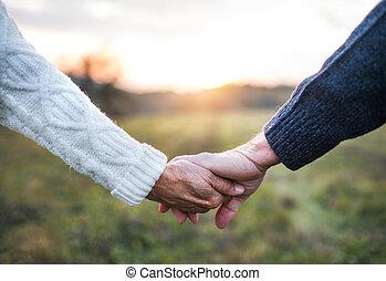 uno, primo piano, di, tenere mani, di, coppie maggiori, in, un, autunno, natura, a, sunset.