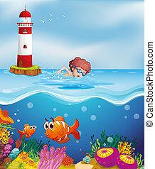 uno, ragazzo, nuoto, con, pesci, e, coralli, spiaggia