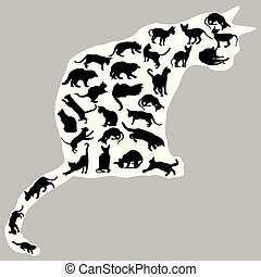 uno, silhouette, gatti, dentro, gatto