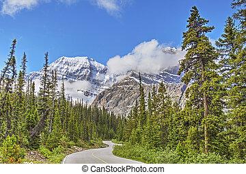 uno, strada montagna, in, jasper parco nazionale, alberta, canada
