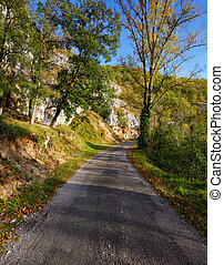 uno, strada rurale, su, uno, soleggiato, giorno autunno