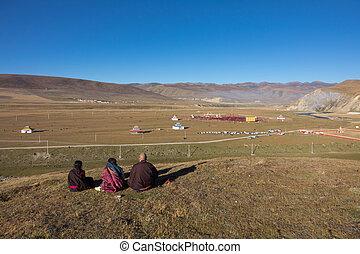 uno, tibetano, monaci, seduta, su, il, collina, a, luce sole, in, yarchen, gar, sichuan, china., yarchen, gar, è, il, più grande, concentrazione, di, monache, e, monaci, in, il, world.