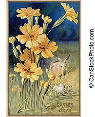 uno, vendemmia, pasqua, cartolina, di, fiori primaverili, uno, coniglio, e, uova