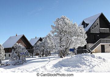 uno, wonderland inverno
