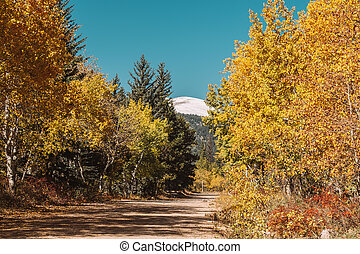 Unpaved road at autumn sunny day