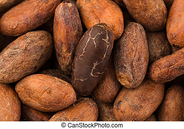 Unpeeled cocoa beans background from above. - Macro detail ...