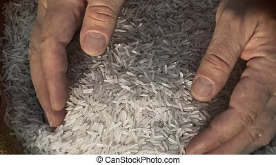 Unprocessed rice being poured from a man's hands