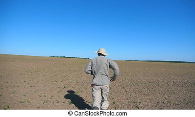 Unrecognizable male farmer running through small sprouts of sunflower on the field at summer. Follow to young man jogging on the meadow on sunny day. Blue sky at background. Rear back view Slow motion