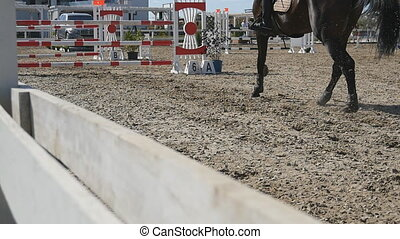 Unrecognizable professional female jockey rides on horseback. Horse is galloping and jumping through a barrier in competition. Slow motion Rear back view Close up