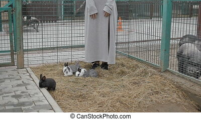Unrecognizable woman with rabbits