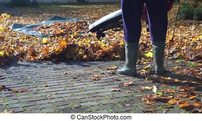 Unrecognized gardener blowing leaves from footpath or road with leaf blower. Gimbal motion shot