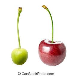 Unripe and ripe cherry.