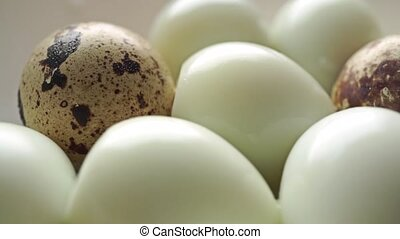 Unshelled hard boiled and shelled quail eggs dolly shot clip