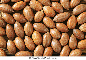 Fresh unshelled pecan nuts - detail