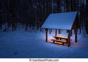 unterstand, kalte , warm, winter, wald