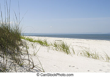 Untouched beaches and sand dunes with grassy details