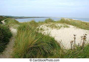 Untouched nature - dunescape on the isle of Sylt in the ...