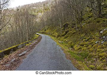 run-down road in rural landscape - unused, run-down road in...