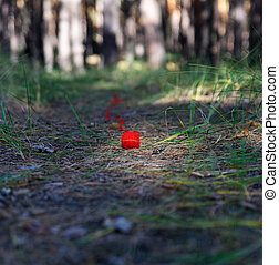 unwound small red ball of wool yarn on a footpath in the middle of a pine forest