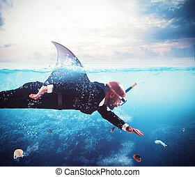 uomo affari, squalo