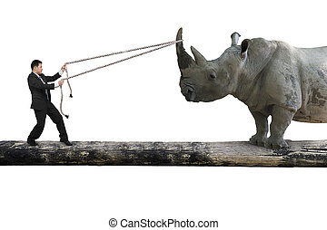 uomo affari, tirare, corda, contro, rinoceronte, equilibratura, su, tronco albero
