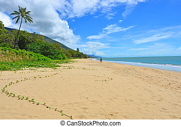 uomo, camminare, su, ellis, spiaggia, in, cairns, queensland, australia