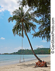 uomo, in, uno, chaise oziano, spiaggia, di, uno, isola tropicale