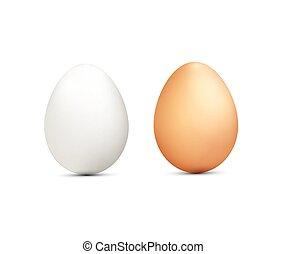 uova, bianco, due, fondo, isolato