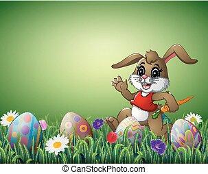 uova, campo, carota, coniglio, pasqua, cartone animato, felice