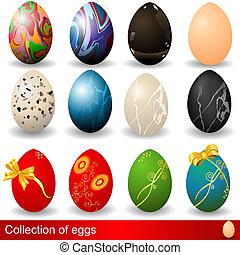 uova, collezione