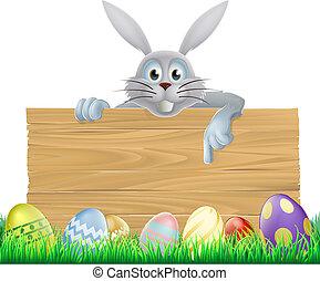uova, coniglietto pasqua, segno