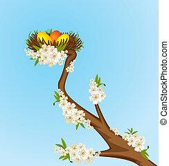 uova, fiori, nido