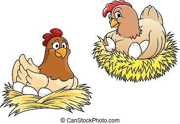 uova, galline, loro, incubazione