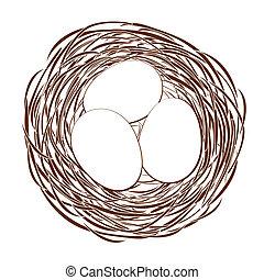 uova, nido