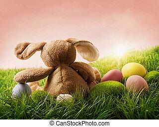 uova pasqua, e, coniglio