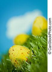 uova, pasqua, giallo