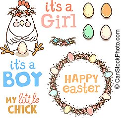 uova, set, pollo, elementi