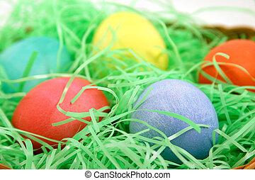 uovo colorato, macro