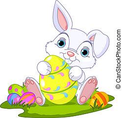 uovo, coniglietto pasqua, easter.